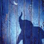 Dumbo e o Poder Transmutador da História